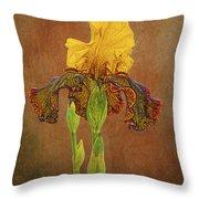 The Kings Prize Iris Throw Pillow