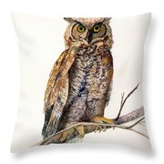 The Knowing Eye Throw Pillow