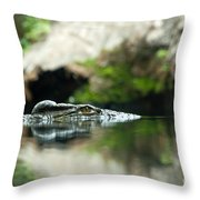 The Kroko Throw Pillow
