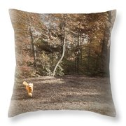 The Labradoodle On The Go Throw Pillow