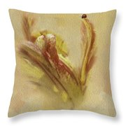 The Lady And The Parrot Tulip Throw Pillow