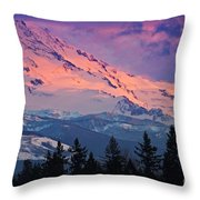 The Lady's Skirt Throw Pillow
