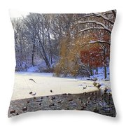 The Lake In Winter Throw Pillow