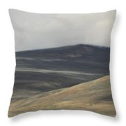 The Land Scape Throw Pillow