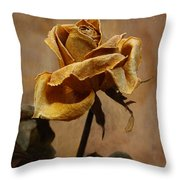 The Last Autumn Rose Before The First Snow Throw Pillow