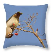 The Last Berries Are For Me Throw Pillow