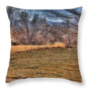 The Last Days Of Fall Throw Pillow