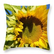 The Last Of Summer 1 Throw Pillow