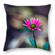 The Last Of Summer - Featured 3 Throw Pillow