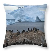 The Last Wilderness... Throw Pillow