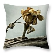 The Last Yellow Rose Of Summer Throw Pillow