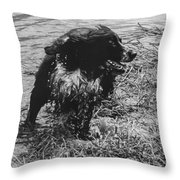 The Laughing Springer Throw Pillow