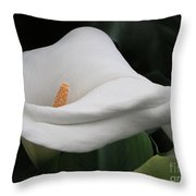 The Legend Of The Calla Lily Throw Pillow