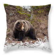 The Lehardy Boar Throw Pillow