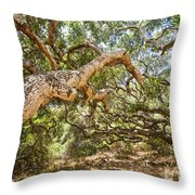 The Life Of Oaks - The Magical Trees Of The Los Osos Oak Reserve Throw Pillow
