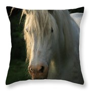 The Light In The Mane Throw Pillow
