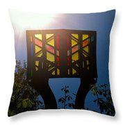 The Light Of Knowledge Throw Pillow