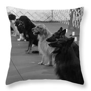The Lineup Throw Pillow