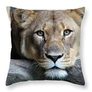 The Lion Queen Throw Pillow