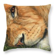 The Lion Sleeps Throw Pillow by David Stribbling
