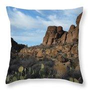 The Living Desert Of Arizona Throw Pillow