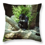 The Lone Chimp Throw Pillow