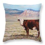 The Lone Range Throw Pillow
