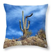 The Lonely Suguaro Throw Pillow