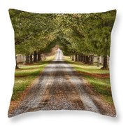The Long Drive Throw Pillow