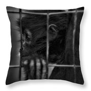 The Look Of Captivity Black And White Throw Pillow