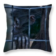 The Look Of Captivity Throw Pillow
