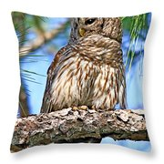 The Lookout Throw Pillow