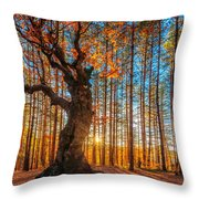 The Lord Of The Trees Throw Pillow by Evgeni Dinev