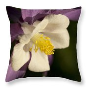 The Lord Reigns Let All The Earth Rejoice Throw Pillow