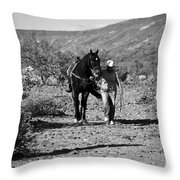The Lost Shoe Throw Pillow