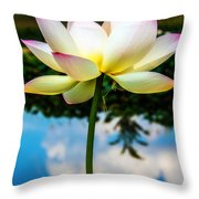 The Lotus Blossom Throw Pillow