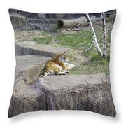 The Lounging Tiger 1 Throw Pillow