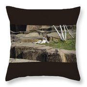 The Lounging Tiger 2 Throw Pillow