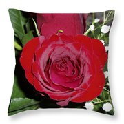 The Lovely Rose Throw Pillow