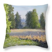 The Lower Field Throw Pillow