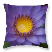 The Luxury Of Things Throw Pillow