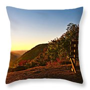 The Magic Bench Throw Pillow