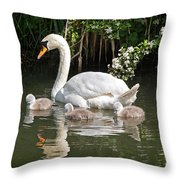 The Magic Of Spring Throw Pillow by Gill Billington