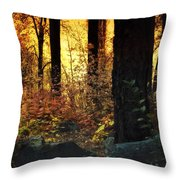 The Magic Of The Forest  Throw Pillow