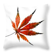 The Magical Colors Of Fall Throw Pillow