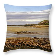 The Maine Coast Throw Pillow by Skip Willits