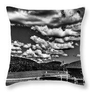 The Majestic Big Moose Lake Throw Pillow