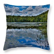 The Majestic Cary Lake Throw Pillow