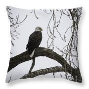 The Majestic Eagle Throw Pillow