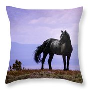 The Majestic Stallion Throw Pillow